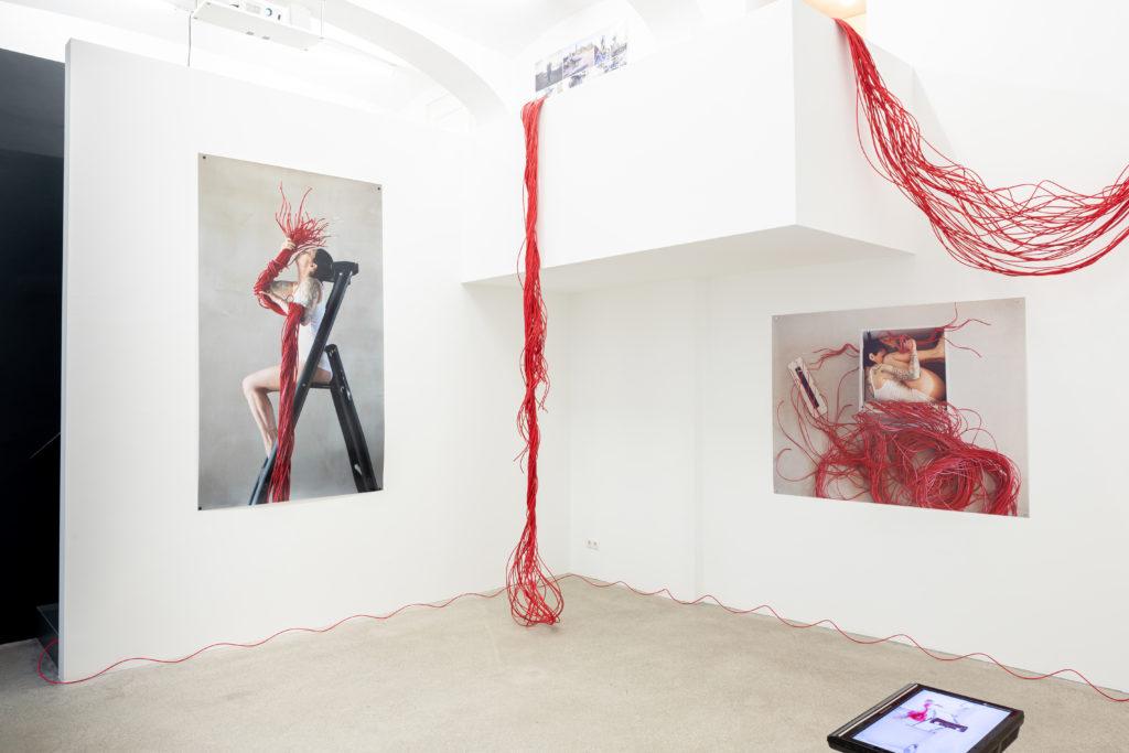 boxquadrat - Ausstellung Roberta Lima Ghost Plant